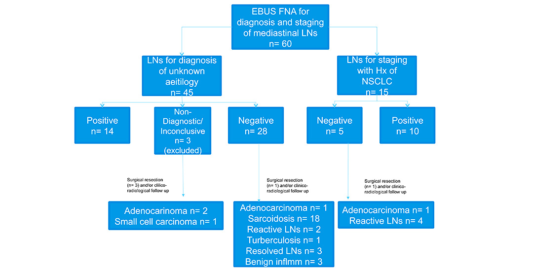 Effectiveness of Endobronchial Ultrasound-Guided Fine Needle Aspiration Biopsy