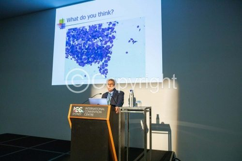 ICC Conference 2019 Photos   0131   ASC