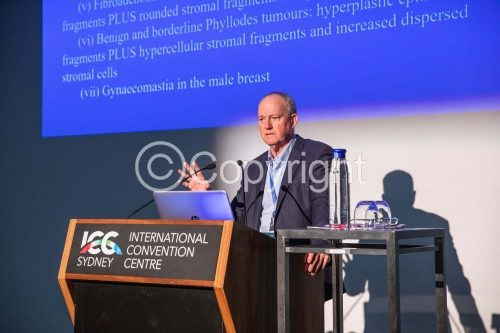 ICC Conference 2019 Photos | 0138 | ASC